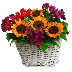 Теплый вечер +30% цветов с доставкой в Воронеже