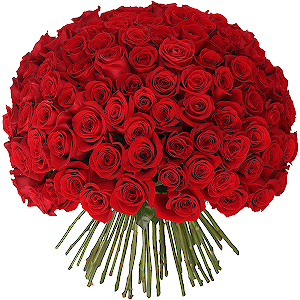 Букет из 101 красной розы с доставкой в Воронеже