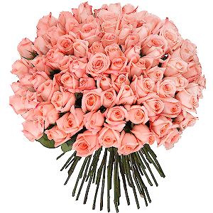 Букет из 101 розовой розы с доставкой в Воронеже